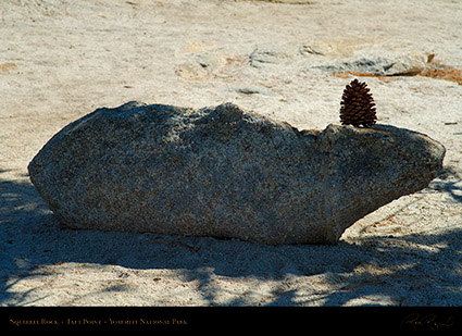 Squirrel_Rock_Taft_Point_X6729