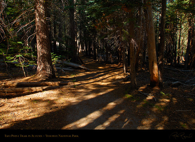 Taft_Point_Trail_Autumn_X6633