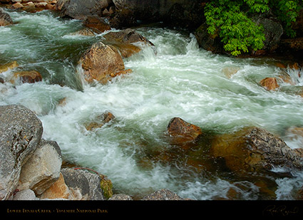 Lower_Tenaya_Creek_2839