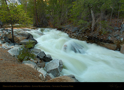 Lower_Tenaya_Creek_Dawn_X0690