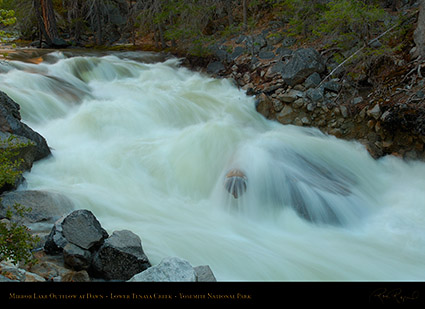 Lower_Tenaya_Creek_Dawn_X0691