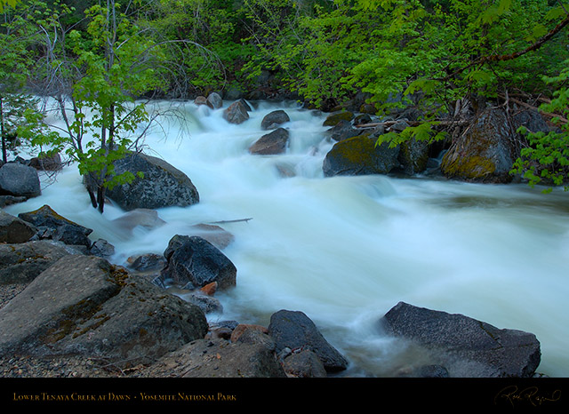 Lower_Tenaya_Creek_Dawn_X2066