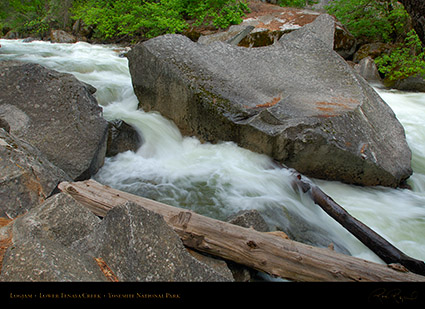 Lower_Tenaya_Creek_Logjam_X2160