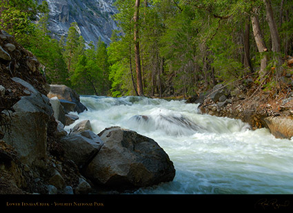 Lower_Tenaya_Creek_X2195