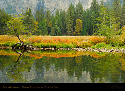 Merced_River_Autumn_Reflection_X6414