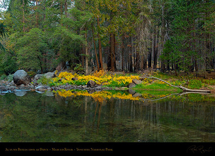 Merced_River_Dawn_Reflection_X6381