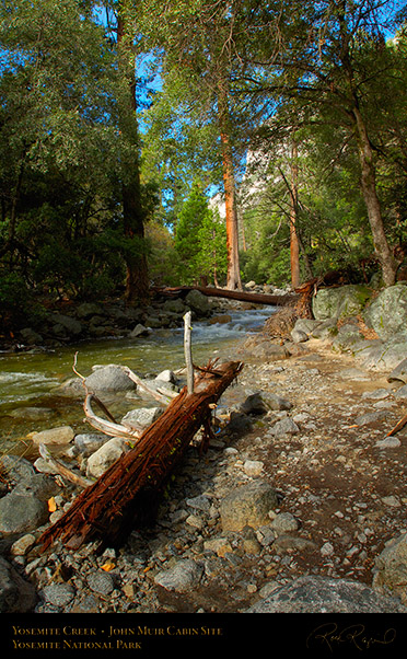 Yosemite_Creek_John_Muir_Cabin_Site_X0403