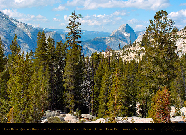 Half_Dome_Upper_Tenaya_Canyon_Tioga_Pass_3173