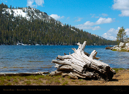Tenaya_Lake_Tioga_Pass_3187