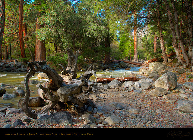 Yosemite_Creek_John_Muir_Cabin_Site_X2087