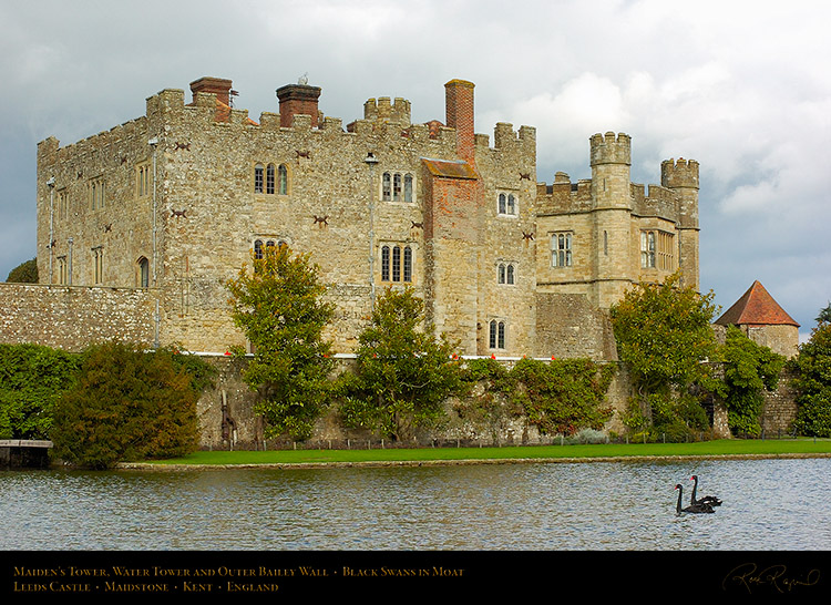 BlackSwans_LeedsCastle_MaidensTower_1661