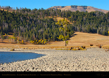 LamarRiverbank_LamarValley_0506
