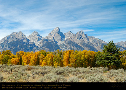 Cottonwoods_CathedralGroup_GrandTetons_1066